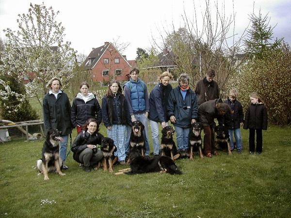 B-Wurf Hovawarte Gruppenbild